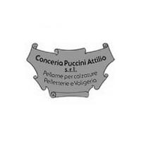 conc_puccini