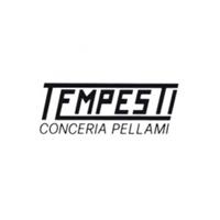 conc_tempesti